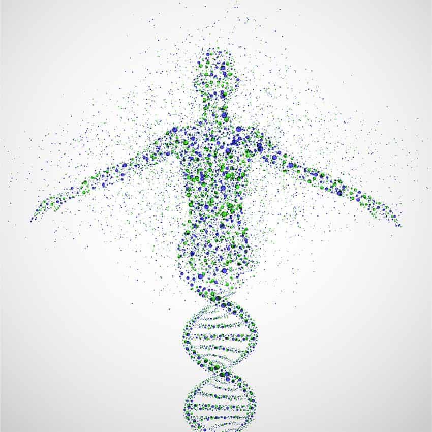 netdiet DNA home